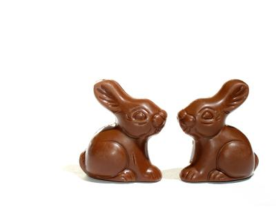 Animal Model for Benefits of Chocolate for Cardiovascular
